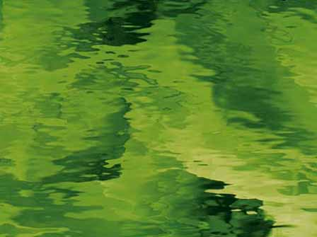 Moss Green - Water Glass