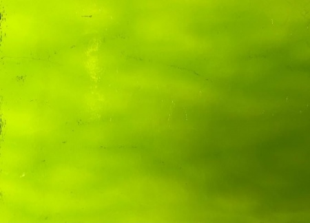 Wissmach Lime Green Aqualite