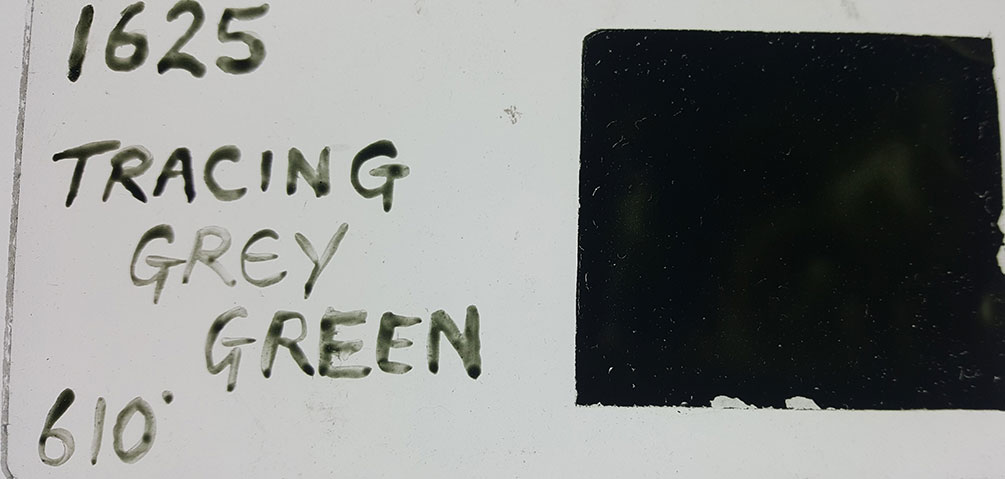 Tracing Grey Green Enamel Paint
